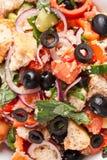 Panzanella bread salad Royalty Free Stock Photos