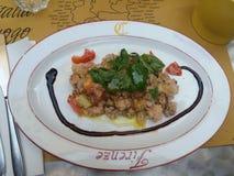 Panzanella bread salad Royalty Free Stock Photo
