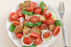 Panzanella. Healthy italian bread salad stock photos