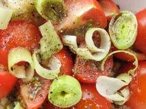 Panzanella sałatka od Tuscany Obraz Stock
