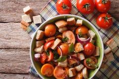 Panzanella salad close-up on a plate. horizontal top view Royalty Free Stock Photo