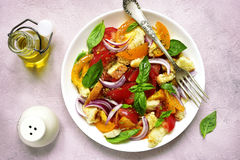 Panzanella - traditional italian tomato salad with bread and oni Stock Photos