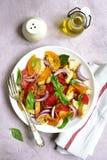 Panzanella - tradycyjna włoska pomidorowa sałatka z chlebem i oni Zdjęcia Royalty Free