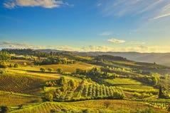 Panzano in Chiantiwijngaard en panorama bij zonsondergang Toscanië, Italië stock afbeeldingen
