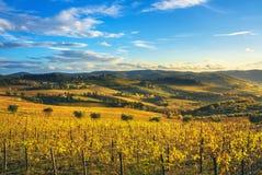 Panzano dans le vignoble et le panorama de chianti au coucher du soleil La Toscane, AIE images libres de droits