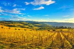 Panzano dans le vignoble et le panorama de chianti au coucher du soleil La Toscane, Italie photo stock