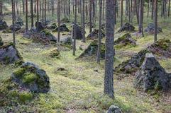 Panzerabwehr- Hindernisse in den Finnland-Wäldern stockbild