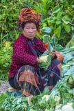 Pao缅甸的部落妇女画象  免版税库存图片