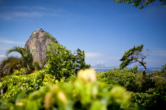 Pao De Acucar Royalty Free Stock Images