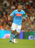 Paolo Cannavaro of SSC Napoli Royalty Free Stock Photos
