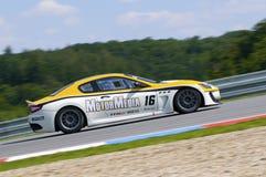 Paolo Necchi in action at FIA WTCC Trofeo Royalty Free Stock Photo
