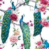 Paon d'aquarelle et modèle de fleurs illustration stock