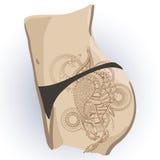 Paon de Mehndy sur des calibres de tatouage Image stock