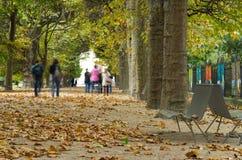 Paople in het park in de herfst Royalty-vrije Stock Afbeeldingen
