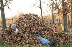 Papà, ragazzi e foglie Immagini Stock Libere da Diritti