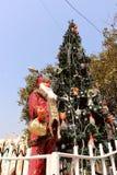 Papá Noel con el árbol de navidad Imagen de archivo libre de regalías