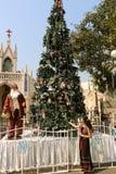 Papá Noel con el árbol de navidad Fotos de archivo libres de regalías