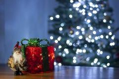 Papá Noel y caja y árbol de navidad rojos brillantes de regalo en fondo foto de archivo libre de regalías