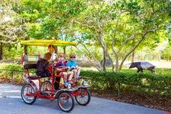 Papá y dos muchachos del niño biking en la bicicleta en parque zoológico con el animal Fotos de archivo
