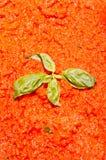 PAP avec la tomate dans une recette toscane traditionnelle Photographie stock libre de droits