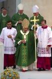 Papa Fotografía de archivo libre de regalías