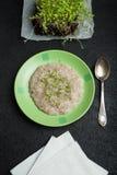 papa de aveia do Multi-cereal com micro verdes para a perda de peso, desintoxicação, saneamento imagens de stock