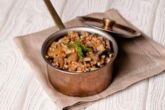 Papa de aveia do trigo mourisco com os cogumelos na bandeja de cobre Imagem de Stock Royalty Free