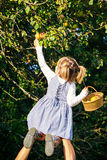 Papa die todler aan het plukken appelen van boom helpen Royalty-vrije Stock Afbeeldingen