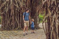 Papa en zoon in een regenachtig bos tegen de achtergrond van de wortels van een boom royalty-vrije stock foto's