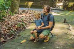 Papa en zoonsreizigers die Ubud-bos in Aapbos ontdekken, Bali Indonesië Het reizen met kinderenconcept royalty-vrije stock afbeelding