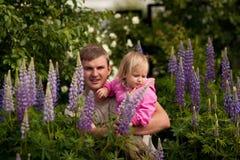 Papa et fille dans les lupins Image stock