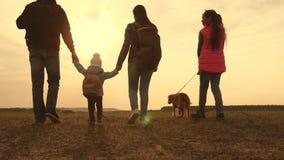 Papa, Mamma, een klein kind en dochters en huisdierentoeristen groepswerk van een hechte familie familiereizen met de hond  stock videobeelden