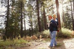 Papa marchant dans la forêt avec la fille d'enfant en bas âge dans le transporteur de bébé Images libres de droits