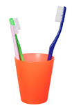 Papa toothbrush and little toothbrush Royalty Free Stock Image