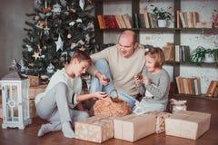 Papa, zoons en dochterzitting bij de Kerstboom Warme kleur Zij letten op een mand van kegels royalty-vrije stock foto