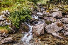 Papada de Grasmere - cascada que fluye de lado de la colina hacia el pueblo de Grasmere en el distrito del lago Fotos de archivo libres de regalías