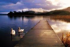 Papada del lago Imagen de archivo