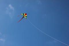 Papagaio agradável no céu Imagem de Stock