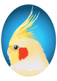 Papagaio amarelo Foto de Stock Royalty Free