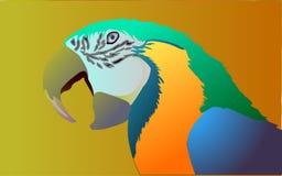 Papagaio colorido ilustração stock