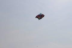 Papagaio da borboleta Imagem de Stock Royalty Free