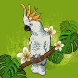 Papagaio de cacatua em um ramo com flores Imagens de Stock Royalty Free