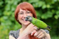 Papagaio de Senegal com menina Imagem de Stock Royalty Free