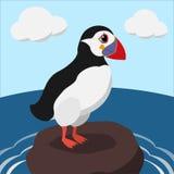 Papagaio-do-mar dos desenhos animados em uma ilustração de cor do penhasco do mar Imagens de Stock