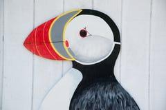 Papagaio-do-mar pintado foto de stock royalty free