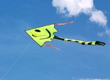 Papagaio do vôo no céu azul Imagem de Stock Royalty Free