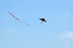 Papagaio do voo no céu foto de stock