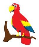 Papagaio dos desenhos animados Imagens de Stock Royalty Free