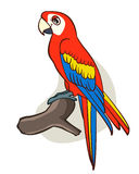 Papagaio dos desenhos animados Fotos de Stock