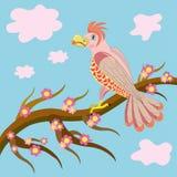 Papagaio enamoured cor-de-rosa. ilustração do vetor